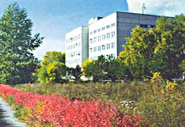 Institute of Computational Modelling, Siberian Branch of the Russian Academy of Sciences, Krasnoyarsk, Russia
